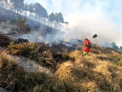 Siguen activos 48 incendios forestales en Cantabria e investigan a dos hombres como presuntos autores