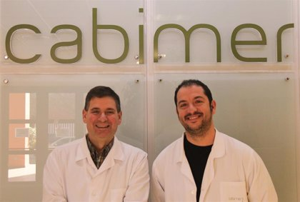 Investigadores andaluces identifican el primer gen implicado en la diabetes gestacional