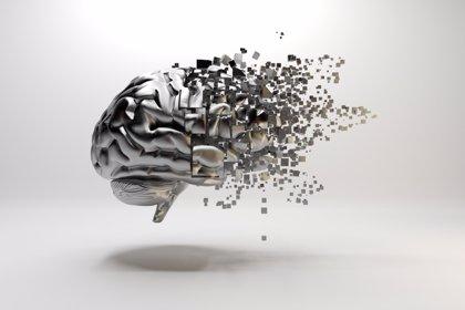 Avances en el conocimiento sobre la muerte neuronal en el Alzheimer y Parkinson
