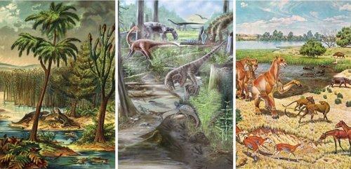 Reconstrucción de comunidades de vetebrados terrestres durante el Farenozoico