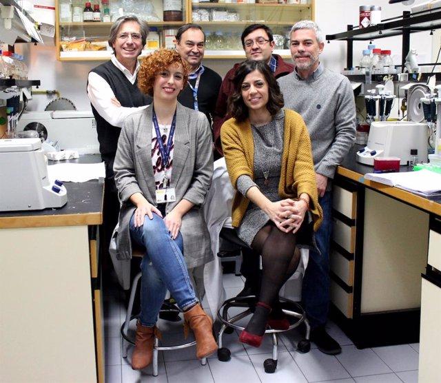 Hallan unas mutaciones genéticas que causantes de una nueva miopatía congénita