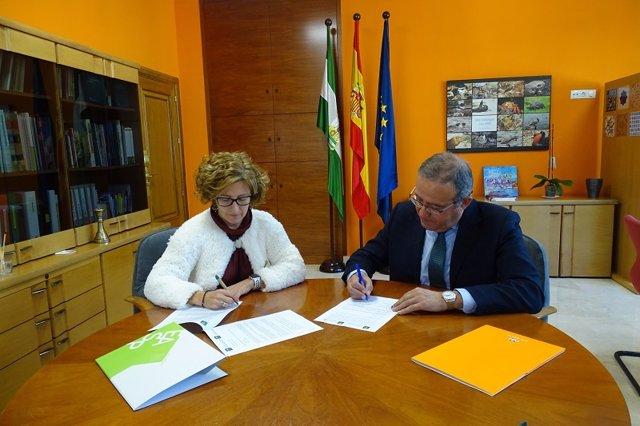 La directora gerente de la Escuela Andaluza de Salud Pública, Reyes Álvarez-Osso