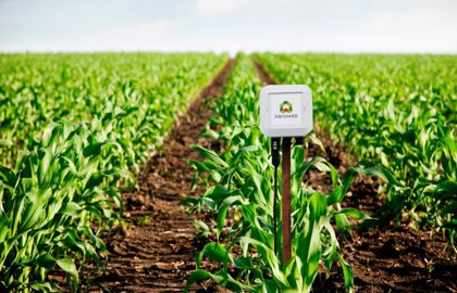 Una startup alicantina desarrolla una app para ahorrar agua en pequeñas explotaciones agrarias