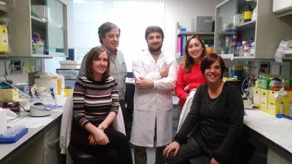 Identifican una nueva terapia contra el Alzheimer que autorregulan las células del paciente