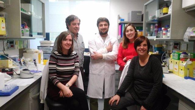 Identifican una nueva terapia contra el Alzheimer que se autorregula según el pa