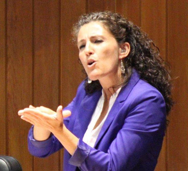 María Luz Esteban Saiz, Directora Del Centro De Normalización Lingüística De La