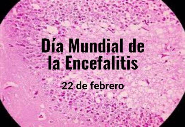 Día de la encefalitis