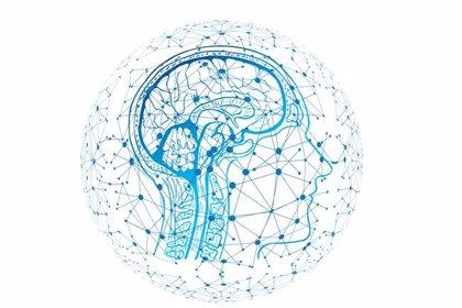 Investigadores españoles crean un sistema de detección de patrones neuro-inspirado