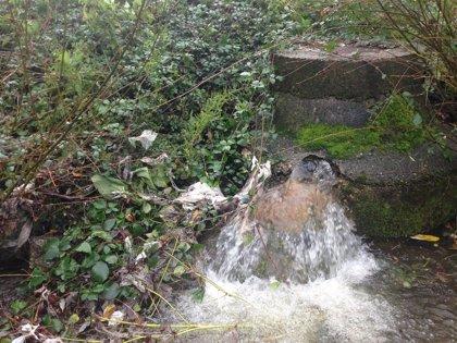 """La concentración de fármacos en el agua aumenta y causa ya """"efectos ecológicos dañinos"""""""