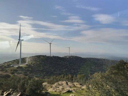 """Energía renovable.- AEE valora """"positivamente"""" el plan de Energía y Clima por ser """"ambicioso"""""""