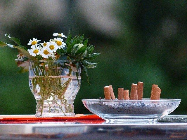 Dejar de fumar, colillas, cenicero, ramo de flores, margaritas