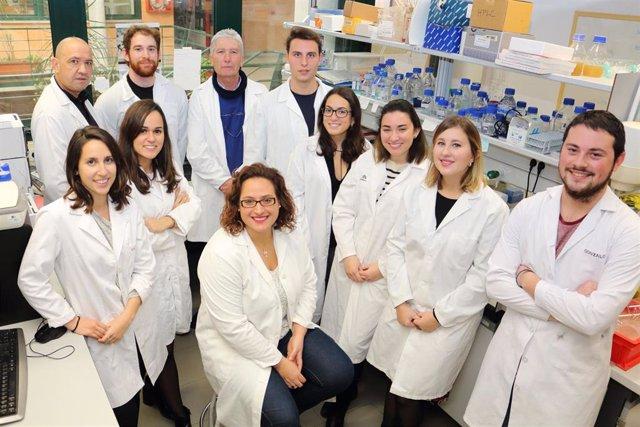 Sevilla.- La UPO inicia una nueva línea de investigación de Enach Asociación fin