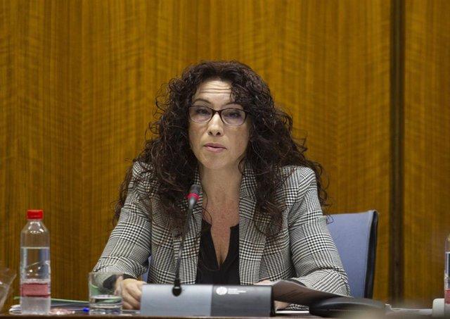 La consejera  de Igualdad, Políticas Sociales y Conciliación comparece en comisi