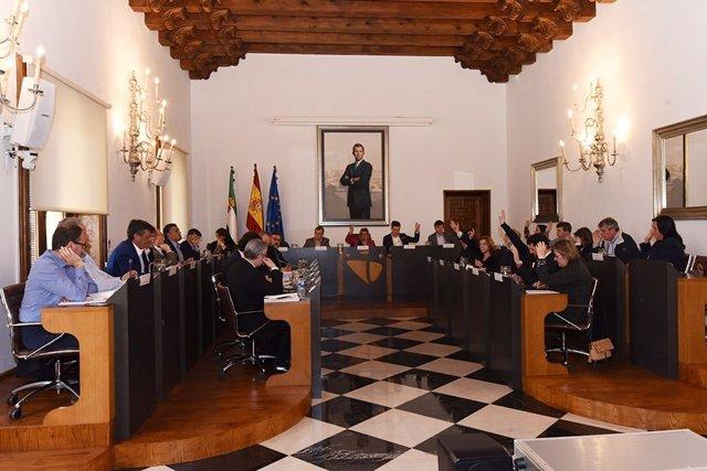 Pleno ordinario Diputación de Cáceres