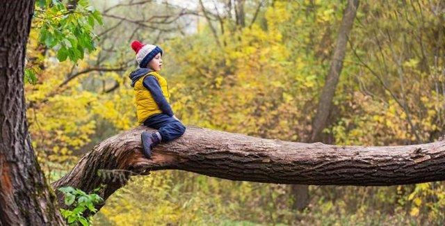 Dinamarca.- Estar rodeado de espacios verdes en la infancia puede mejorar la sal