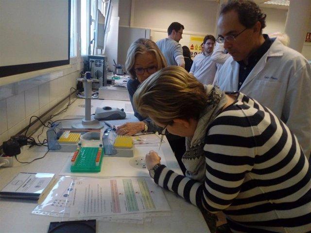 Un nuevo dispositivo de bajo coste y alta sensibilidad detecta alergias a antibi