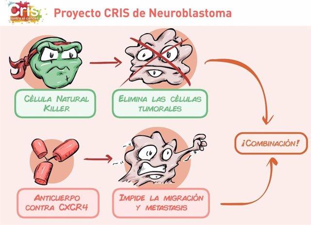 CRIS lanza un estudio sobre la aplicación de inmunoterapia en neuroblastomas ped