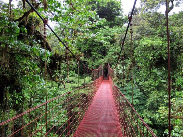 Costa Rica, dispuesto a convertirse en el primer país iberoamericano con consumo