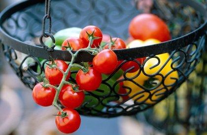 Los tomates tienen diferentes antioxidantes en función de su color