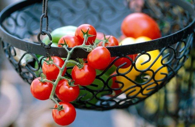 Tomates, pimientos, vegetales, hortalizas