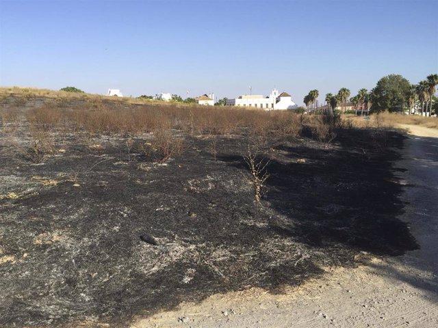 Incendio en la parcela de Montelirio