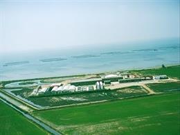 Producció del mol·lusc del delta de l'Ebre