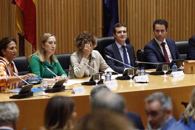 El presidente del PP, Pablo Casado, preside la reunión plenaria del Grupo Parlam