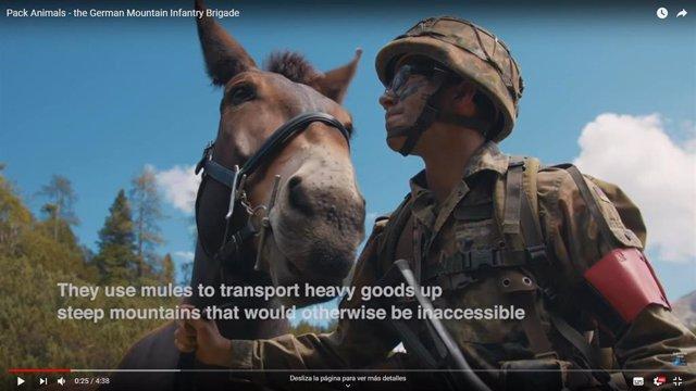 Captura de pantalla del vídeo publicado por la OTAN