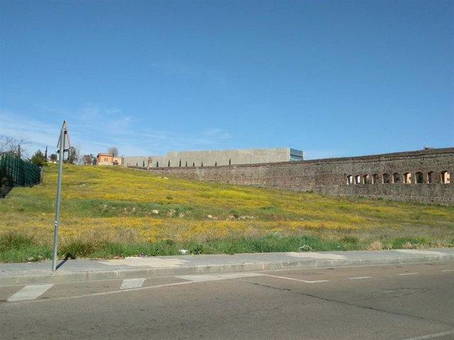 Entorno junto al acueducto de San Lázaro de Mérida que será adecentado