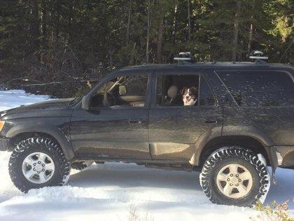 Un hombre que se quedó atrapado 5 días en la nieve dijo a la policía que sobrevivió gracias a un sobre de salsa picante