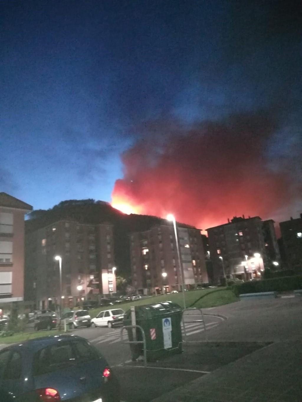 Una segunda evaluación de daños del incendio de Muskiz cifra la superficie afectada en 110 hectáreas