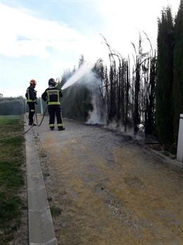 Jaén.- Sucesos.- Segundo incendio en ocho días en los cipreses del parque Andrés