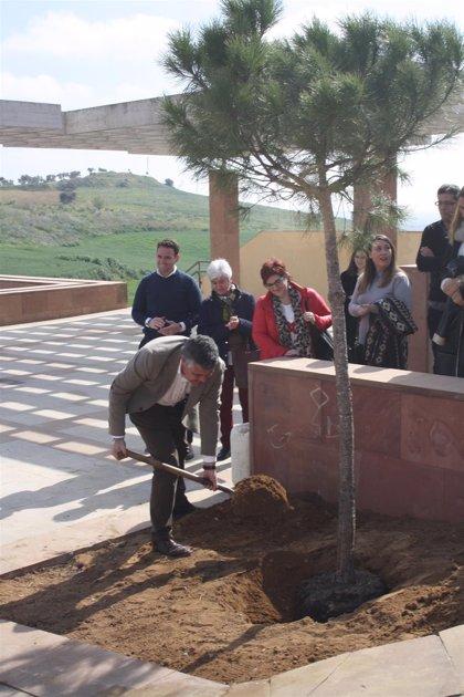 Mairena del Alcor recupera su Mirador de los Molinos como espacio de ocio con vistas a la vega