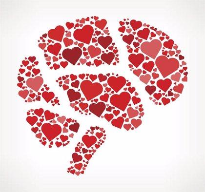 El cerebro está involucrado en el síndrome del 'corazón roto'