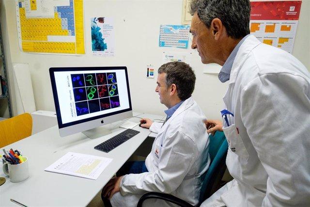 Investigación liderada por la UR diseña nuevas moléculas específicas de tumores