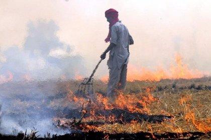 Suecia.- La quema de biomasa aumenta los niveles de contaminación en el sur de Asia