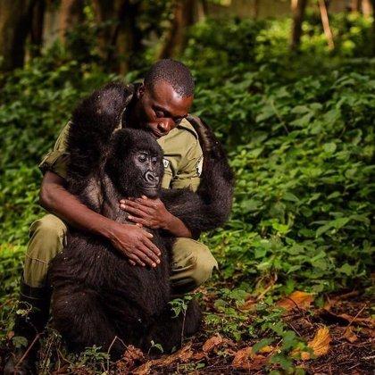 Estas son las 10 fotografías más impresionantes del concurso de Instagram de National Geographic #natgeo100contest