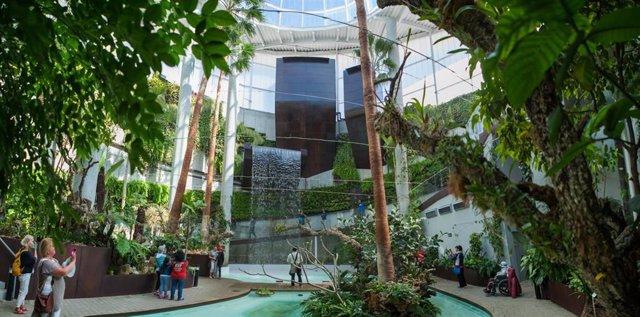 Orquidario Estepona Málaga Turismo Ocio Ambiental Plantas Museo