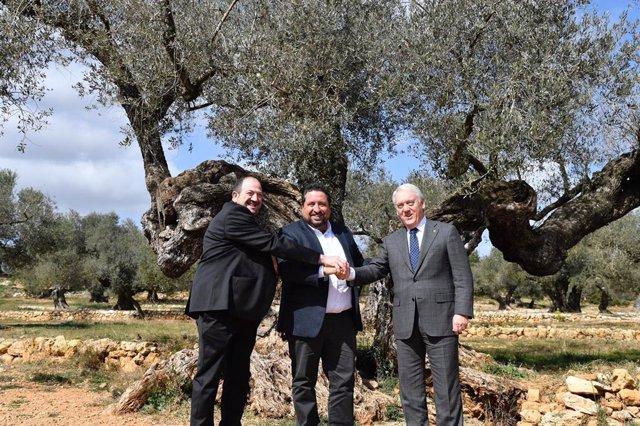 Las Diputaciones de Teruel, Castellón y Tarragona reciben un reconocimiento por