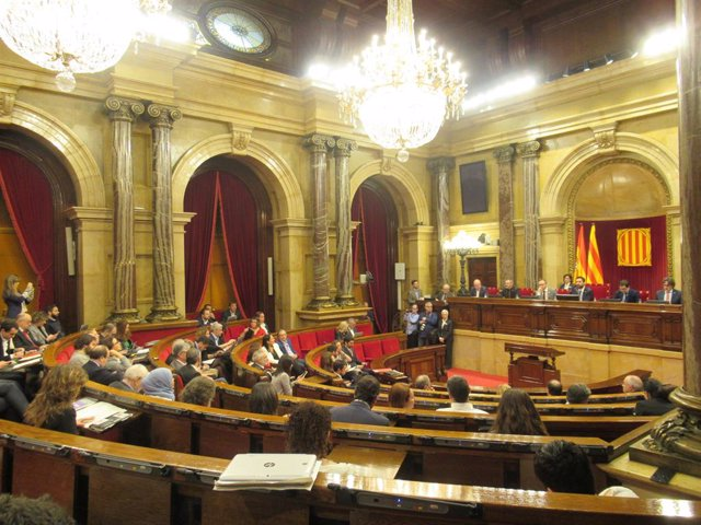 El Parlament de Catalunya tramita una llei sobre gossos terapèutics per a víctim
