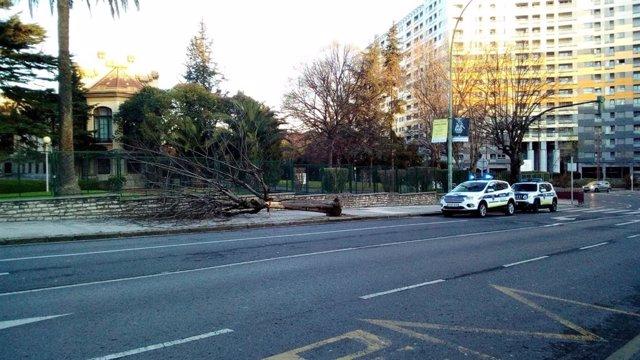Derriba un árbol en Barakaldo (Bizkaia) tras colisionar con su camión