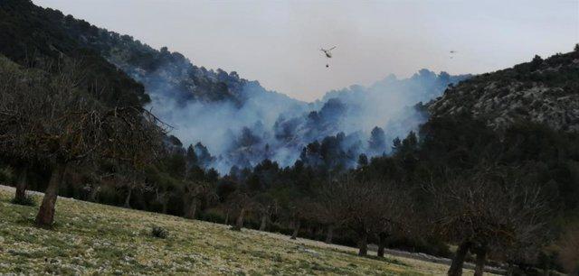 Successos.- L'incendi forestal de Son Ordines va ser provocat per una crema de r