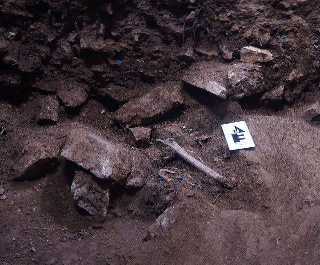 Descobreixen un enterrament collectiu de fa 3.000 anys a Vimbodí i Poblet (Tarr
