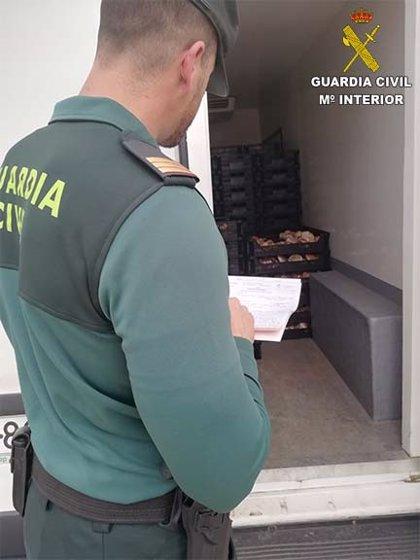 Intervenidos 240 kilos de gurumelos de origen desconocido en dos camiones en Paymogo (Huelva)