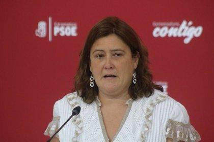 """El PSOE dice que las mujeres necesitan """"medidas de tratamiento integral"""" y """"no solamente"""" una bonificación fiscal"""