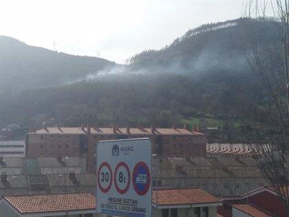 La superficie quemada en los incendios sufridos en Bizkaia los últimos días asciende a alrededor de 151 hectáreas