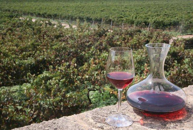 Las exportaciones de vino balear de calidad a la Unión Europea aumentan un 13 po