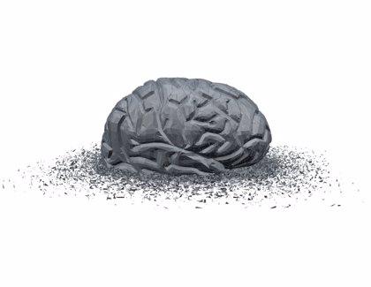 ¿Qué mata al cerebro?