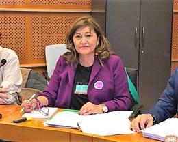 Satse reclama en el Parlamento Europeo una norma para acabar con los riesgos del
