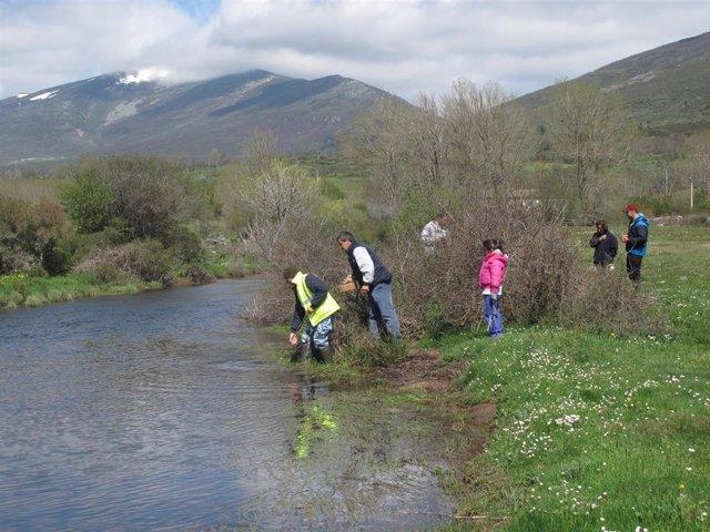 Casi la mitad de 62 tramos de ríos analizados en Cantabria presentaba un estado